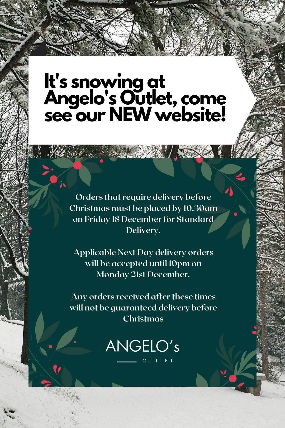 Information on Christmas Delivery and asking readers to check out the snowfall effect on the website