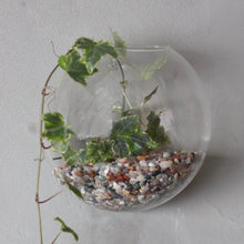 Load image into Gallery viewer, All Glass Terrarium - Small Hanging Wall Bowl - Angelo's Outlet Ltd