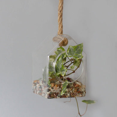 All Glass Terrarium - Hanging House on Rope - Angelo's Outlet Ltd