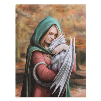 19x25cm Safe Haven Canvas Plaque by Anne Stokes - Angelo's Outlet Ltd