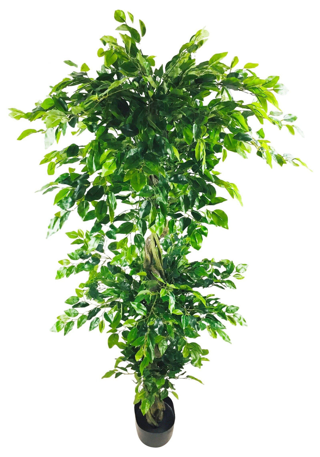 Artificial Ficus Leaf Topiary Mini Leaves 175cm - Angelo's Outlet Ltd