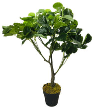 Load image into Gallery viewer, Artificial Money Bag Plant 77cm - Angelo's Outlet Ltd