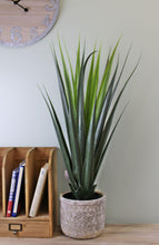 Load image into Gallery viewer, Artificial  Aloe Vera Plant, 80cm - Angelo's Outlet Ltd