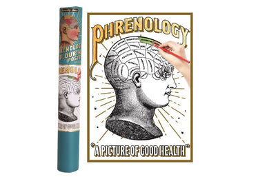 Phrenology Colouring Poster In Gift Tube | Angelo's Outlet