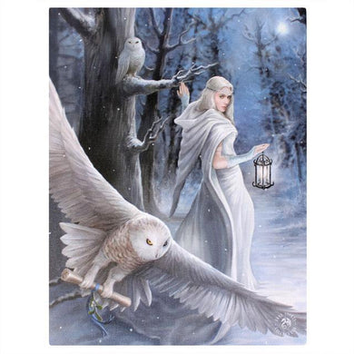 19x25cml Midnight Messenger Canvas Plaque by Anne Stokes - Angelo's Outlet Ltd