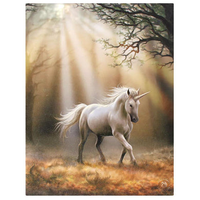 19x25cm Glimpse Of A Unicorn Canvas Plaque By Anne Stokes - Angelo's Outlet Ltd