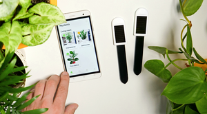 Smart plant sensors with solar cell: Starter Set