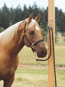 Shown with Horse Tied The Blocker Tie Ring has changed the way people tie their horses, providing a safe, humane way to tie your horse.
