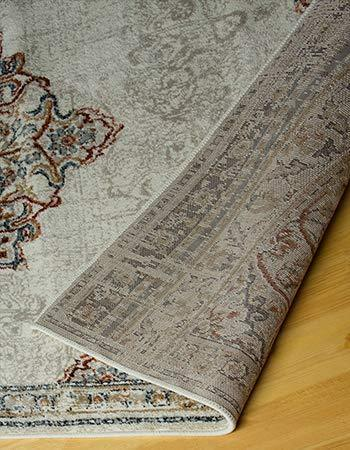 4643 Ivory Bohemian Distressed Oriental Area Rugs