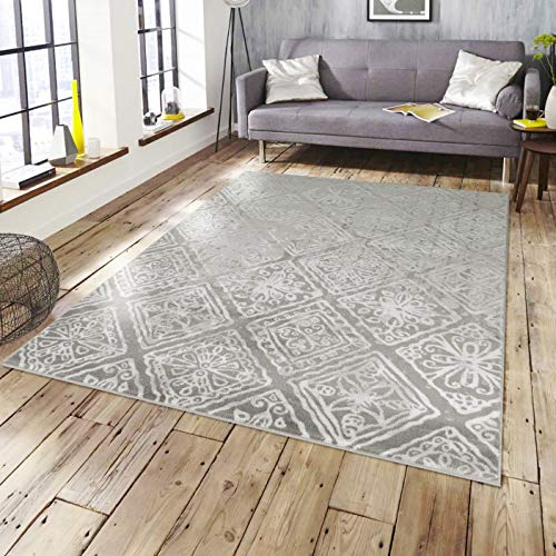 5051 Gray Distressed Farmhouse Contemporary Area Rugs