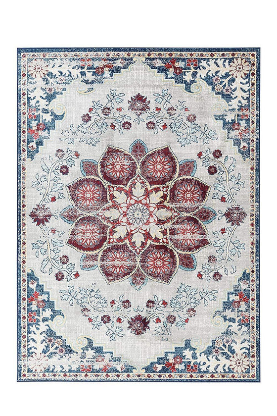 4648 Gray Red Bohemian Distressed Oriental Area Rugs