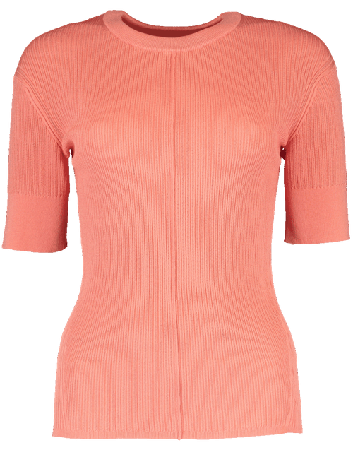 CHLOE CLOTHINGTOPKNITS PINK / L Sheer Scoop Neck Knit Top