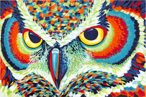 colorful painting of owls eyes