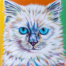 Load image into Gallery viewer, Serious Ragdoll multi color cat painting