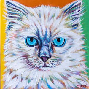 Serious Ragdoll multi color cat painting