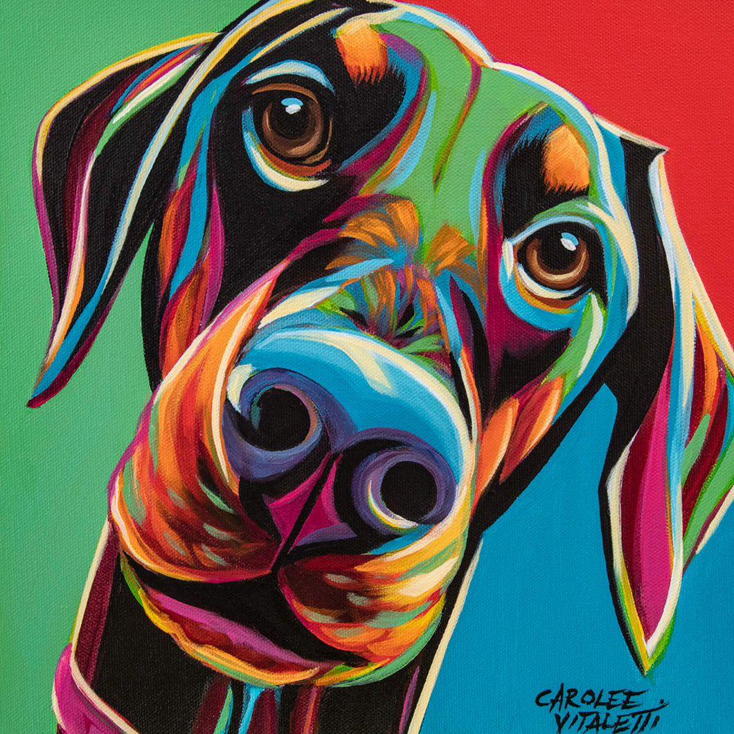 Doberman | Canvas Print