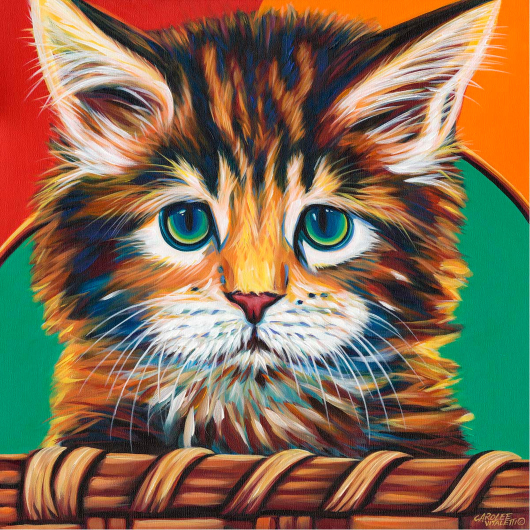 Kitten in Basket I | Canvas Print