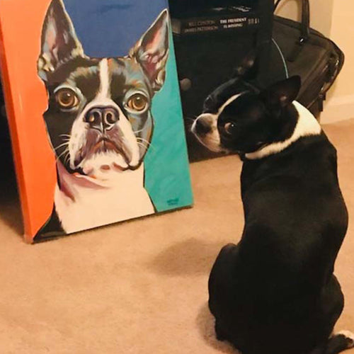 Boston Terrier multi color dog painting with subject