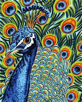 Plumed Peacock | Canvas Print