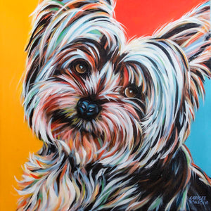 Sweet Yorkie | Original Acrylic Painting