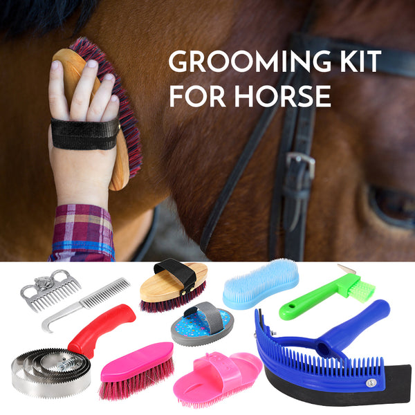 Horse Brush Sweat Scraper Hoof