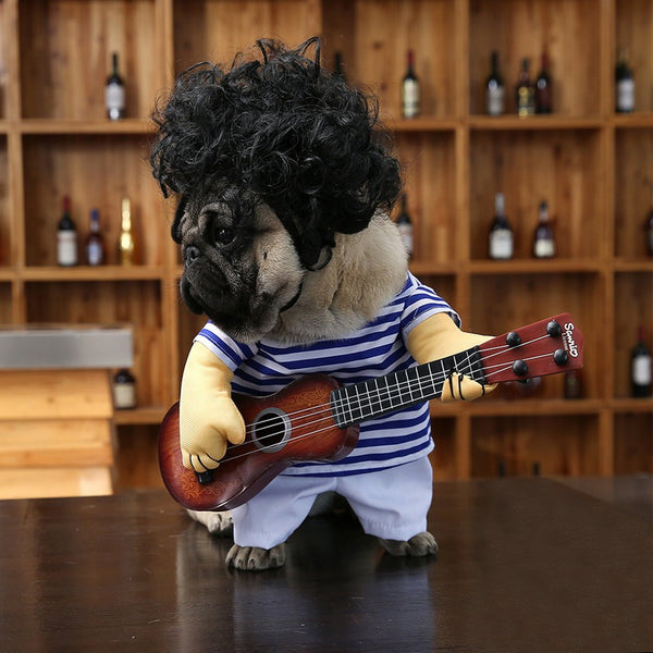Cat Dog Guitarist Dressing Costume