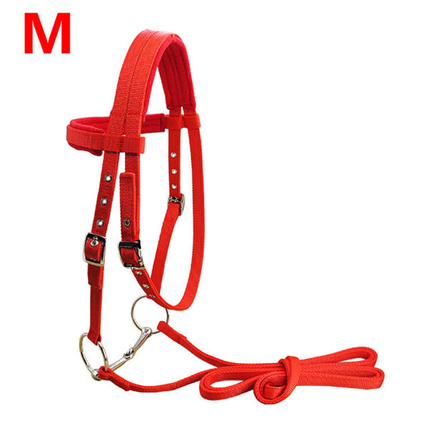 S/M/L Adjustable Horse Riding Equipment Halter Horse Bridle With Bit And Rein Belt For Horse Equestrian Accessories Soft Thicken