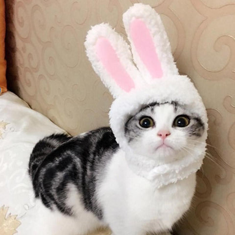 Cute Pet Costume Cosplay Rabbit Ears Cap Hat for Cat Halloween Xmas Clothes Fancy Dress with Ears Autumn Winter  Paty Accessorie