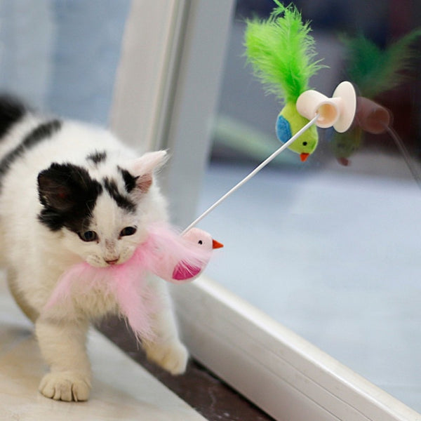 Pet Kitten Cat Feather Toy Glass Sucker Holder Funny Feather Toys Teaser Wand Sucker Window Bird Interactive Training Cats Toy