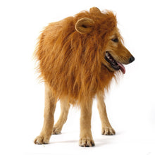 Load image into Gallery viewer, Large Lion Mane Pet Costume