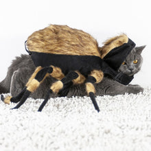 Load image into Gallery viewer, Spider Pet Costume
