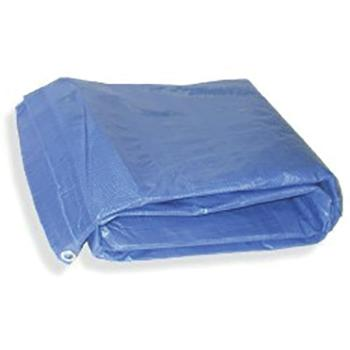 Blue Poly Tarp- Cover Floor and Furniture, Disposable.