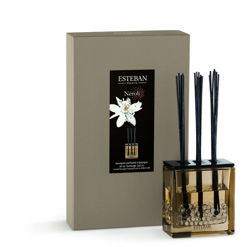 Esteban Paris-Neroli 250 ml Cam Hazneli Diffuser Set-Luxuria