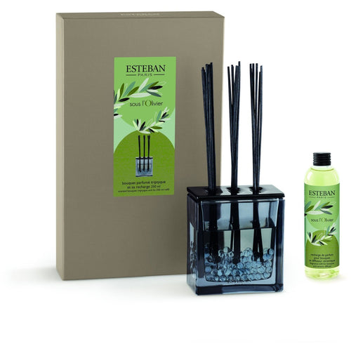 Esteban Paris-Olivier 250 ml Cam Hazneli Diffuser Set-Luxuria