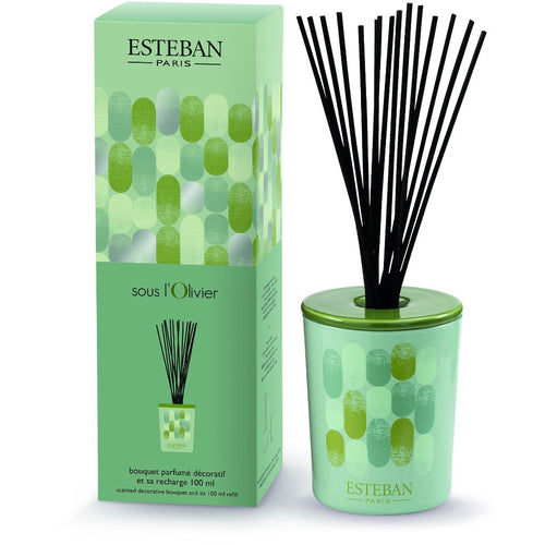 Esteban Paris-Olivier 100 ml Cam Hazneli Diffuser Set-Luxuria