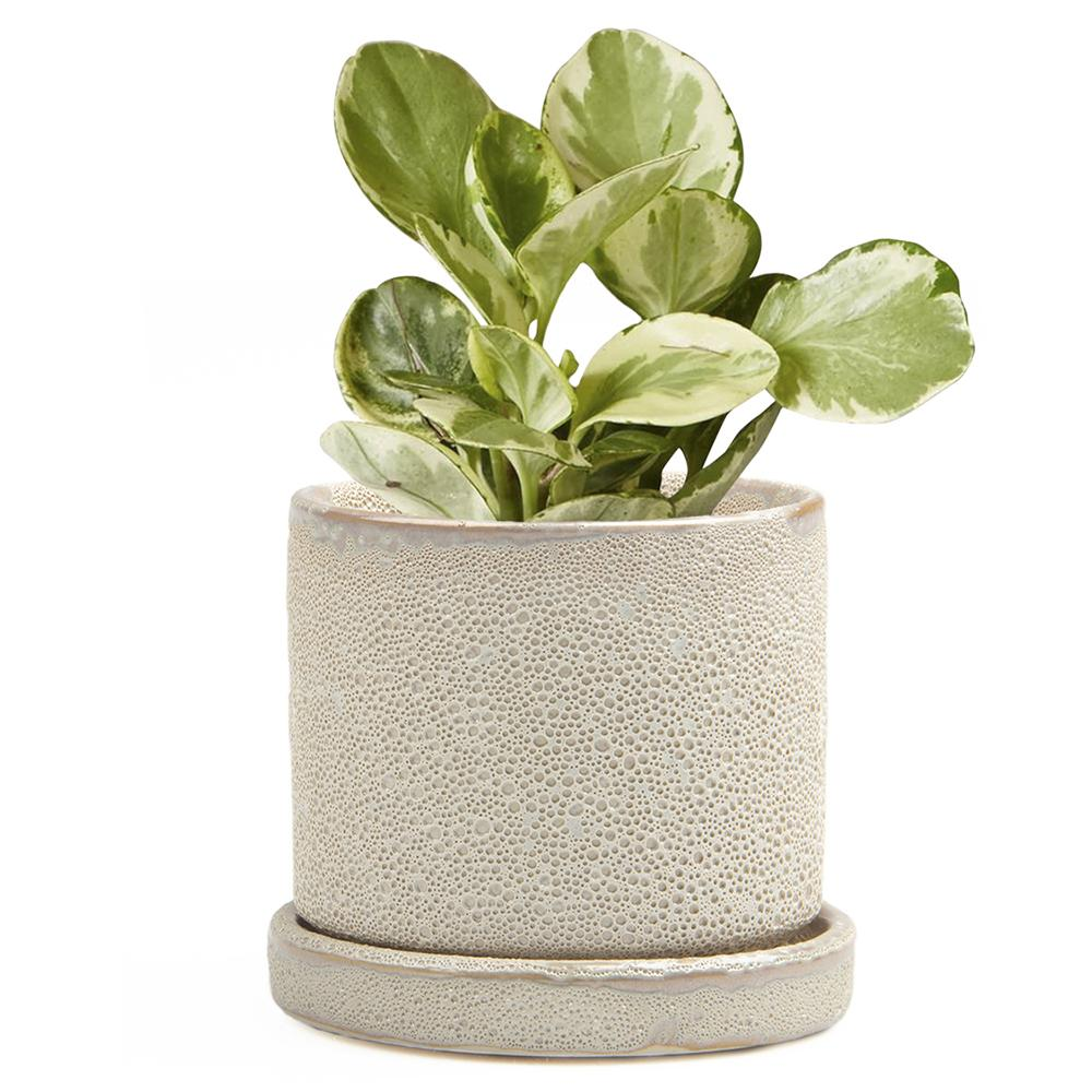 Big Minute 2 Pot & Saucer - Ivory Speckles Planter Chive