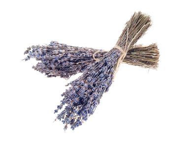 Dried French Lavender Bundles Botanicals The Crest Home