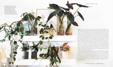 The Leaf Supply Guide to Creating Your Indoor Jungle Book Penguin Random House