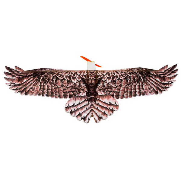 Dancing RC Airplane Planes Wings Aircraft Hobby Flying Toy Eagle Fixed Wing KIT/PNP Slow Flyer Trainer for Beginners - Carolina Superstore