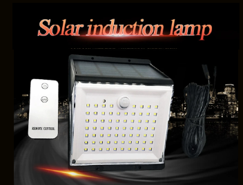 Solar induction lamp with remote against night yard scene background