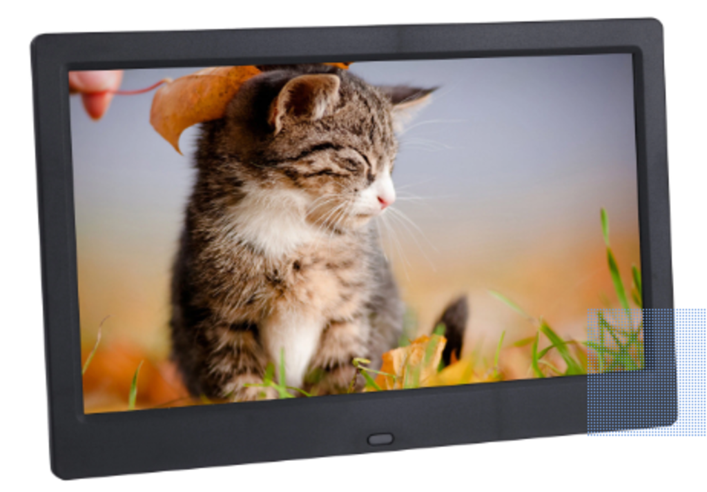 Black digital frame with photo of striped kitty in grass being tickled by a leaf