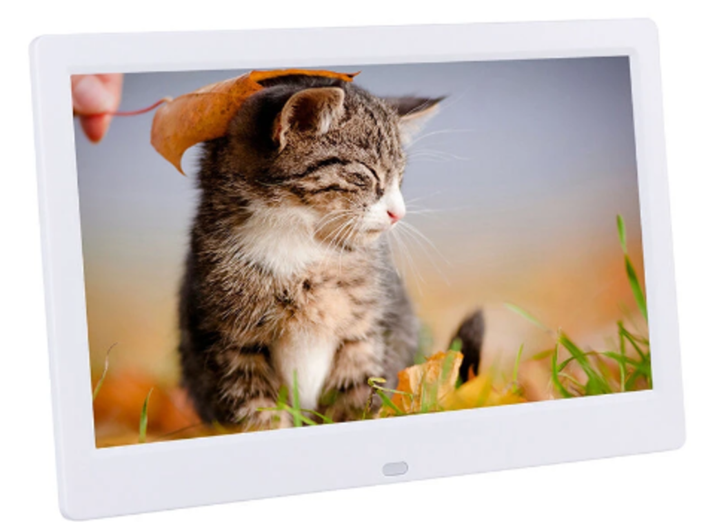 White digital frame with photo of striped kitty in grass being tickled by a leaf