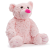 Pink Teddy Bear Blue
