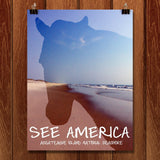 Assateague Island National Seashore by Kaitlyn for See America - 1