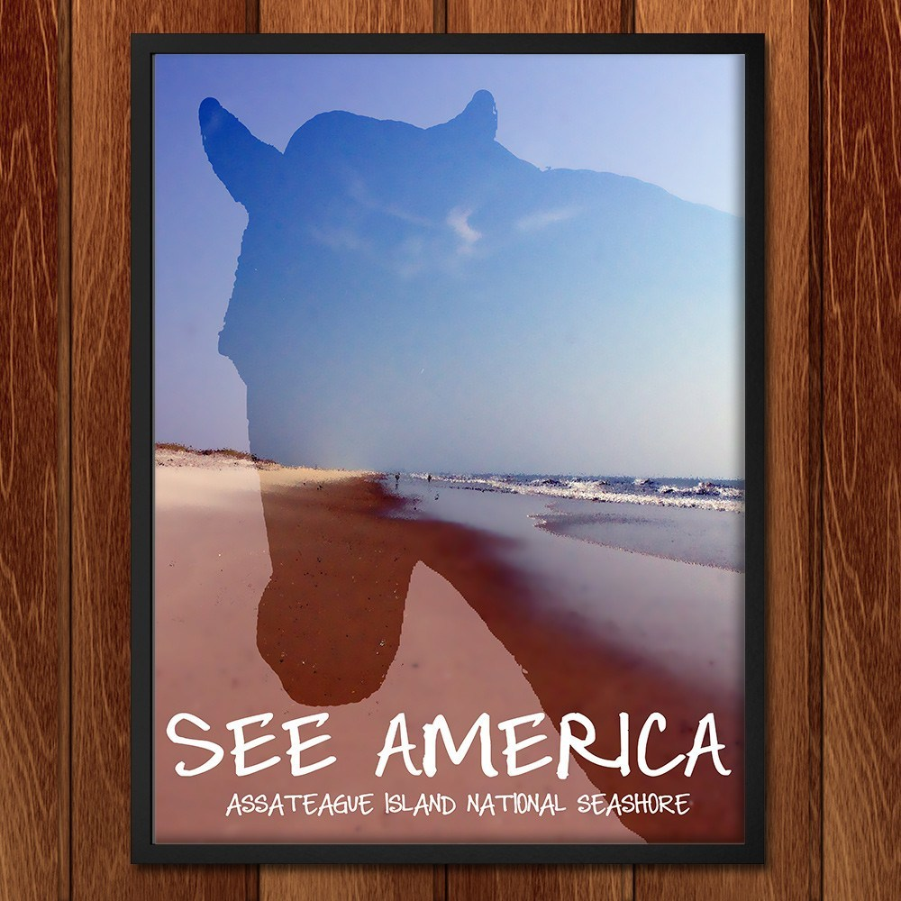 Assateague Island National Seashore by Kaitlyn for See America - 2