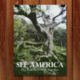 Blue Ridge National Heritage Area 2 by Shannon McGee for See America - 1