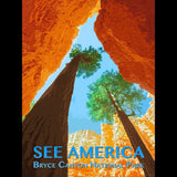 Bryce Canyon National Park by Zack Frank for See America - 3