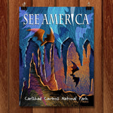 Carlsbad Caverns National Park by Elena Ospina for See America - 1
