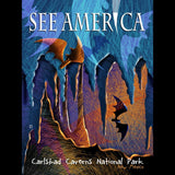 Carlsbad Caverns National Park by Elena Ospina for See America - 3
