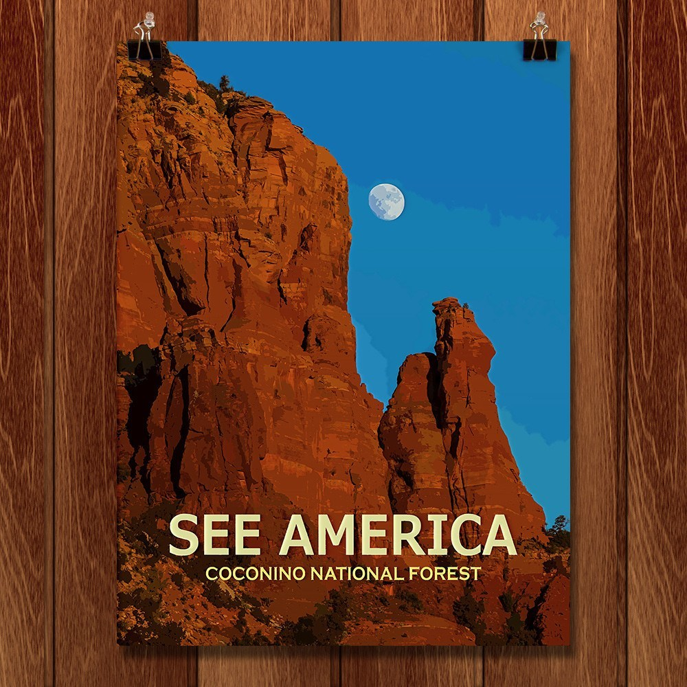Coconino National Forest by Ed Gleichman for See America - 1